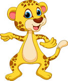 Cheetah cartoon Stock Photos