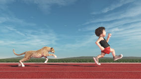Cheetah chasing a man Stock Photos