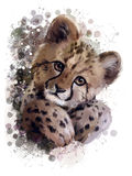 Cheetah cub. Portrait watercolor painting Stock Images