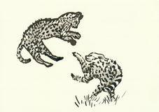 Cheetah cubs. Hand drawn picture, black ink technique - two cheetah cubs Stock Photo