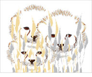 Cheetah cubs Royalty Free Stock Photos