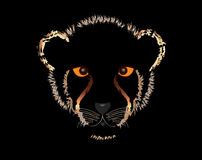 Cheetah cubs Stock Photography