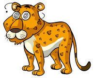 Cheetah with dizzy face Stock Image