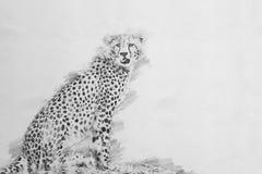 cheetah Esboço com lápis ilustração royalty free