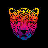 Cheetah face. Designed using melting colors graphic vector Royalty Free Stock Photography
