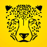 Cheetah face. Head graphic vector Stock Image