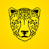 Cheetah face. Outline graphic vector Royalty Free Stock Photos