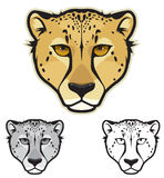 Cheetah Faces. Illustration of cheetah faces in color, grayscale and black and white Royalty Free Stock Images