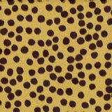 Cheetah Fur. For use as a background Royalty Free Stock Image