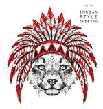 Cheetah in the Indian roach. Indian feather headdress of eagle. Hand draw vector illustration Stock Photos