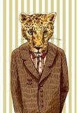 Cheetah in a jacket Royalty Free Stock Image