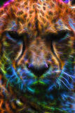 Cheetah Neon Special Effect Portrait Royalty Free Stock Images