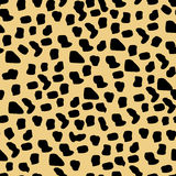 Cheetah pattern seamless  Stock Photography