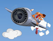 Cheetah the pilot. Flying by the plane Stock Images