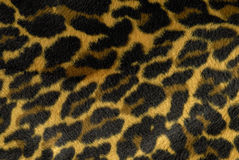 Cheetah Print Fur Close Up, Background Royalty Free Stock Images