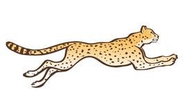 Cheetah running sketch royalty free illustration