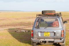 Cheetah som ligger i skugga Fotografering för Bildbyråer