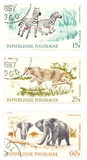 Cheetah, zebras, elephants post stamps Royalty Free Stock Photos