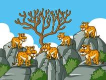 Cheetahs stand on rocky mountain royalty free illustration
