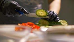 Chef übergibt den Schnitt der frischen Gurke auf runden Stücken für das Kochen des Gemüsesalats stockfotografie