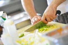 chef obraz royalty free