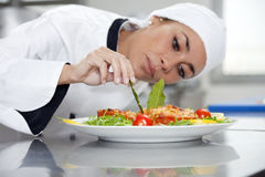 Chef Stock Images
