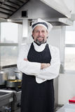 Chef Royalty Free Stock Photos
