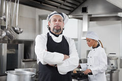 Chef. Portrait of confident chef looking at camera in kitchen Stock Image