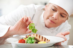 Chef Adding Garnish To Meal In Restaurant Kitchen. Chef Adding Garnish To Dish In Restaurant Kitchen royalty free stock photo