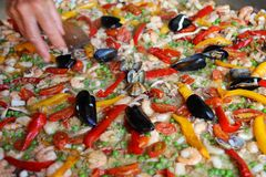 Chef adds a bit of parsley in rice paella with shrimp Royalty Free Stock Images