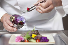 Chef Arranging Edible Flowers On Salad. Midsection closeup of male chef arranging edible flowers on salad in commercial kitchen Royalty Free Stock Image