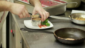 Chef Arranging Plate Food. stock video