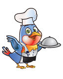 Chef Bird Mascot Stock Images