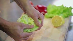Chef breaks fresh crispy iceberg salad slowmotion
