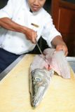 Chef butchering barracuda fish. Photograph of chef butchering barracuda fish royalty free stock photo