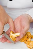 Chef with chanterelle Royalty Free Stock Photos