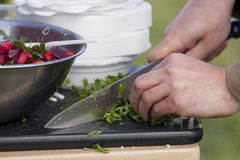 Chef chopping parsley. The chef chopped parsley with a knife. Metal bowl with beetroot salad royalty free stock photo
