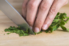 Chef chopping parsley leaves Royalty Free Stock Image