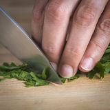 Chef chopping parsley leaves Royalty Free Stock Photo