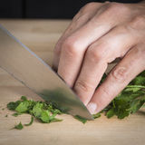 Chef chopping parsley leaves Royalty Free Stock Photos