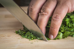 Chef chopping parsley leaves Stock Photo