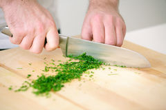 Chef chopping parsley Stock Photos