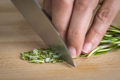 Chef chopping a rosemary branch Royalty Free Stock Photos