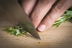 Chef chopping a rosemary branch Royalty Free Stock Photography