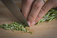 Chef chopping a rosemary branch Stock Photography