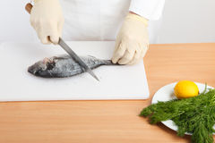 Chef cleaning fish royalty free stock photos