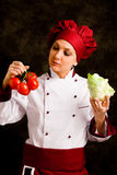 Chef is controlling tomato quality Stock Images