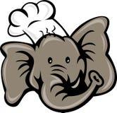 Chef cook baker elephant head Stock Image