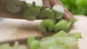 Chef cook cuts celery on cutting board.  stock video footage
