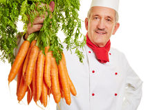 Chef cook holding bunch of carrots Royalty Free Stock Images